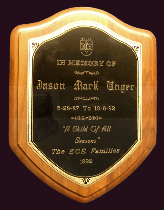 A plaque from Jason's preschool. When it closed down years later, I was given all his memorial items.
