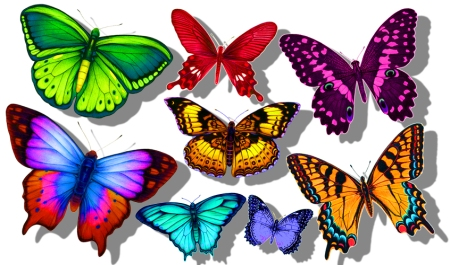 "I love illustrating butterflies and this is an assortment I've named ""Fantasy Butterflies"""
