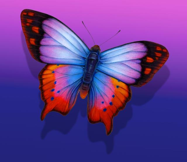 Lavendar Blue Fantasy Butterfly