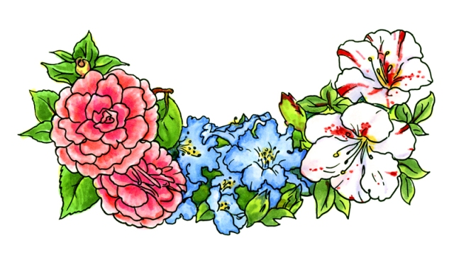 Watercolor Azalea & Camelia