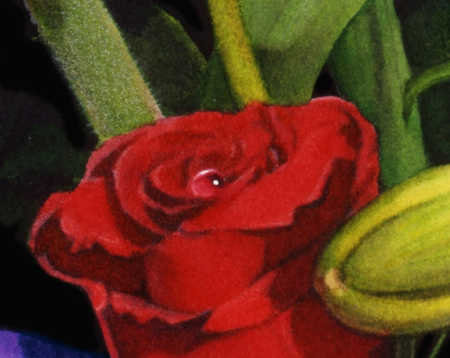 A close-up of one of my watercolor paintings.I love the fuzz on the stem, which I created with colored pencil.