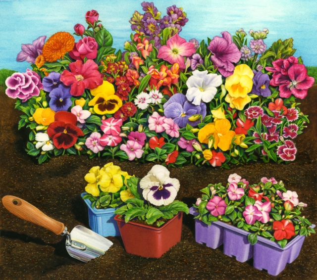 This is my larger painting that I cropped for my song garden image. My illustration was commissioned for use on a soil product package label.