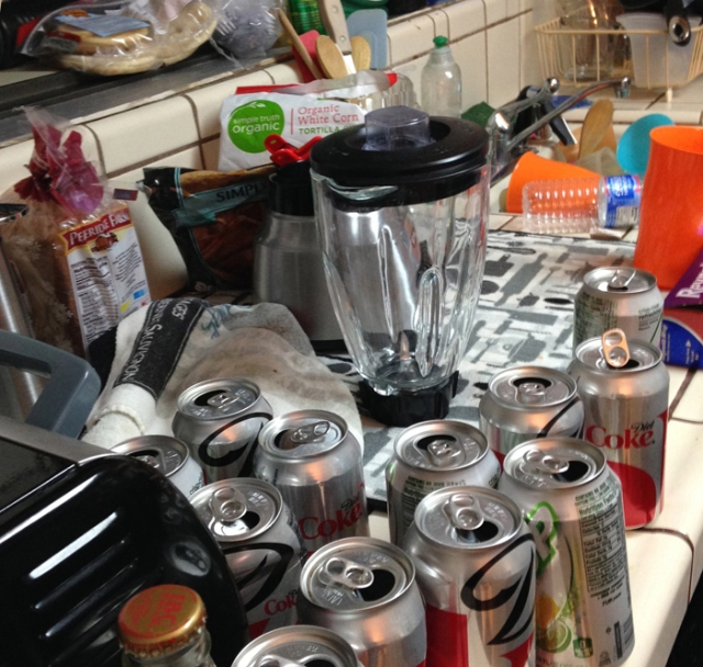 I share this picture of my kitchen counter when I returned from Tucson. My two sons could have done better.
