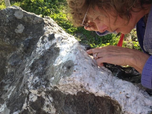 Liz examining rock
