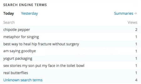 Every day, my blog's stats page lists search terms that people use to find my blog. I was a bit startled by the one mentioning my son putting my face in the toilet bowl. That was before I wrote this story, too!