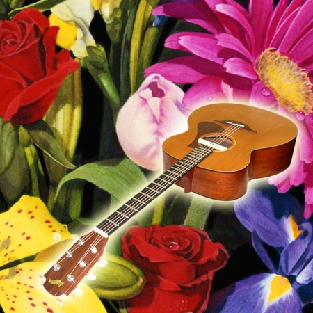 Her Garden & Guitar