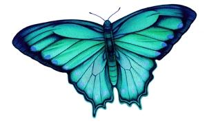 Butterfly Fantasy 1