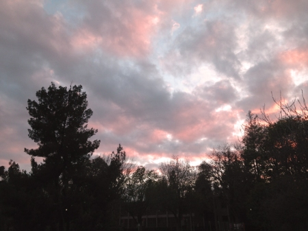 Pink clouds in the sky 2