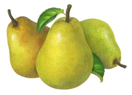 Pear Final Art