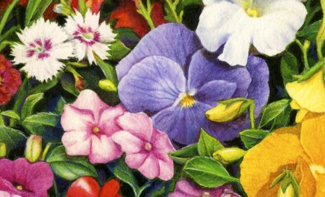 Flower Pallette cropped