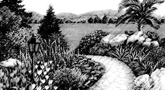 Garden Path 2 B&W