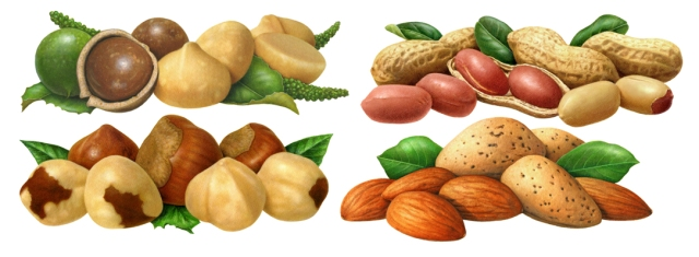 These are samples of my illustrations done for Azar Nuts.