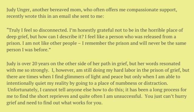 Dee blog excerpt 1