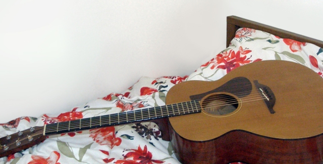 This is a recent picture of my guitar that I might use for the back of my audio book cover.