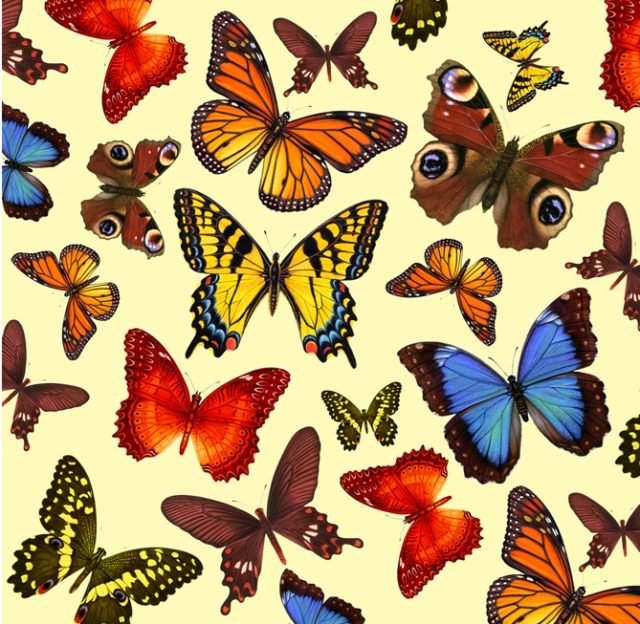 I love butterflies. I created the wallpaper and header for this blog from these illustrations of mine.