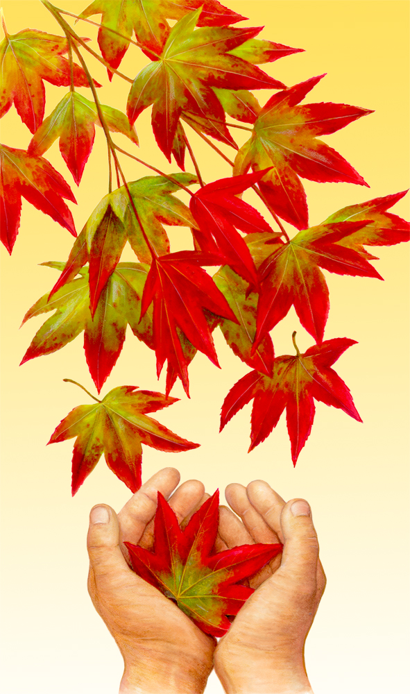 Leaves and Hand