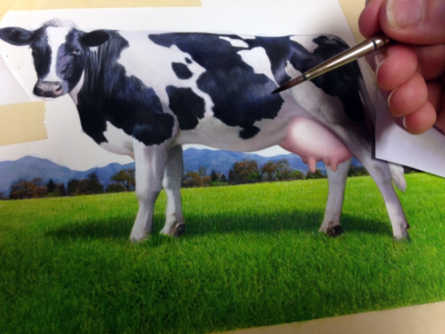 "My illustration assignment for Tillamook was ""moooving"" along when I painted this cow. It was an ""udderly"" delightful project, to say the least. I know I should ""cud"" out telling cow puns already!"