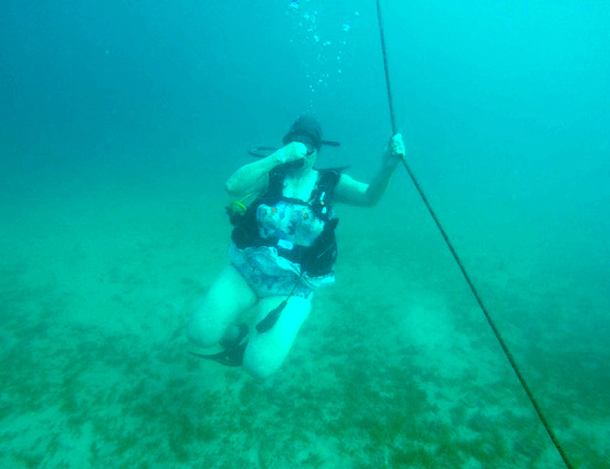 dive picture 1