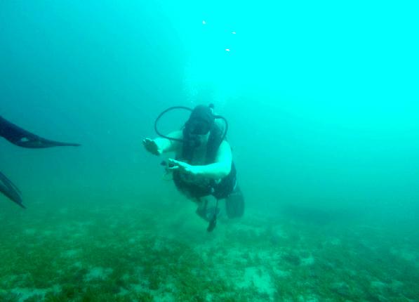 dive picture 4