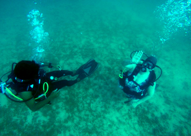 Dive Picture 5